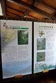 宜蘭縣---羅東鎮:羅東林業文化園區森動館5