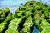新北市---石門區:老梅綠藻礁22