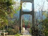 台中市---和平區:捎來吊橋1