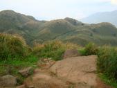 每年必會山岳之七星山系步道:20110408七星山主峰31