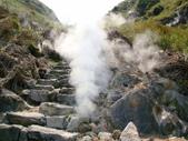每年必會山岳之七星山系步道:20110408七星山主峰62