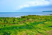 新北市---石門區:老梅綠藻礁34