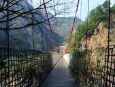 台中市---和平區:捎來吊橋2