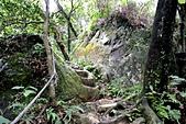 每年必會山岳之天上山:20121219三粒半天上山19