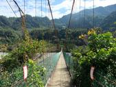 台中市---和平區:白鹿吊橋4