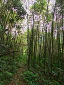 新竹縣---五峰鄉:麥巴萊古道1K版7