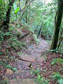 每年必會山岳之天上山:20140413賞桐步道天上山33