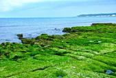 新北市---石門區:老梅綠藻礁24