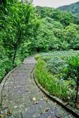 台北市---文山區:貓空茶展中心健康步道4