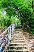 台北市---內湖區:鯉魚山步道4