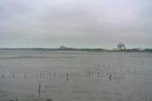 彰化縣---福興鄉:福寶濕地1