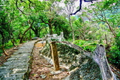 台北市---內湖區:鯉魚山步道8