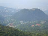每年必會山岳之七星山系步道:20110408七星山主峰18
