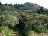 每年必會山岳之七星山系步道:20110408七星山主峰21