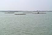 嘉義縣---布袋鎮:好美寮濱海景觀步道8