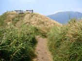 每年必會山岳之七星山系步道:20110408七星山主峰45