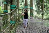南投縣---鹿谷鄉:溪頭探索森林8