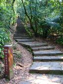每年必會山岳之七星山系步道:20110408七星山主峰9