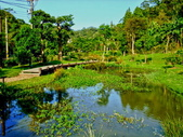 新竹縣---新埔鎮:埤塘窩