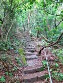 每年必會山岳之天上山:20140413賞桐步道天上山26