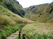 每年必會山岳之七星山系步道:20110408七星山主峰64