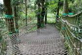 南投縣---鹿谷鄉:溪頭探索森林7