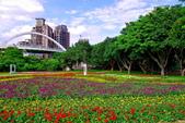 古亭河濱公園花海:2015心形花海暨順遊河濱公園1