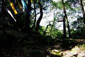 新北市---深坑區:猴山岳登山步道