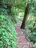 每年必會山岳之天上山:20140413賞桐步道天上山12