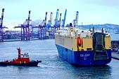 THE SHIPS WORLD 船舶世界:ASIAN MAJESTY亞洲陛下29