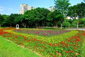 古亭河濱公園花海:2015心形花海暨順遊河濱公園17