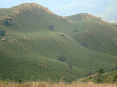 每年必會山岳之七星山系步道:20110408七星山主峰32