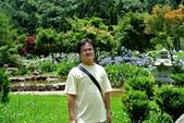 南投縣---竹山鎮:杉林溪藥花園繡球花季7