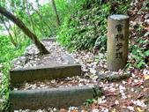 每年必會山岳之天上山:20140413賞桐步道天上山17