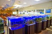 宜蘭縣---礁溪鄉:礁溪金車水產養殖研發中心4