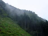 新竹縣---橫山鄉:外比來山區秘境亂闖28