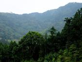 新竹縣---橫山鄉:外比來山區秘境亂闖31