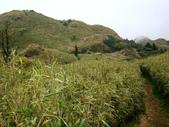 每年必會山岳之七星山系步道:20110408七星山主峰44