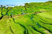 新北市---石門區:老梅綠藻礁28