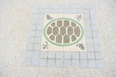 台中市---大安區:龜殼公園10