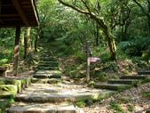 每年必會山岳之七星山系步道:20110408七星山主峰14