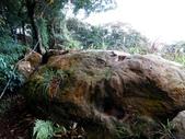 每年必會山岳之天上山:20121219三粒半天上山23