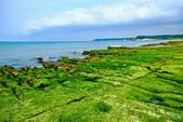 新北市---石門區:老梅綠藻礁18