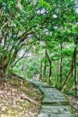 台北市---內湖區:鯉魚山步道13