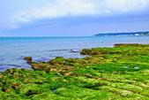新北市---石門區:老梅綠藻礁19