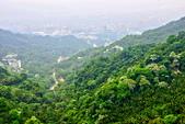 每年必會山岳之天上山:20140413賞桐步道天上山18