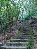 每年必會山岳之七星山系步道:20110408七星山主峰10