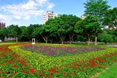 古亭河濱公園花海:2015心形花海暨順遊河濱公園4