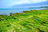 新北市---石門區:老梅綠藻礁15