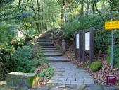 每年必會山岳之七星山系步道:20110408七星山主峰7